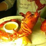 steamed lobster dinner