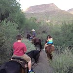 1.5 hour horseback ride