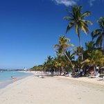 CSA Beach