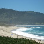 View of the west side of the Beach in Carmel