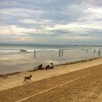 после отлива местные жители приходят на пляж собрать моллюсков на суп