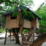 Bahay Kubo Tree House Room Without Toilet and Bath
