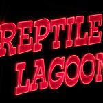 Late night viewing at the Reptile Lagoon on site at South of the Border