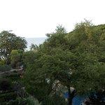 大きな木々に囲まれたホテル!