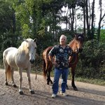 Rodger and his horses