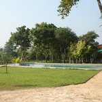 Kalu's Pool