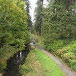 A Walk through Cragside Gardens