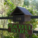 Peaceful Palms B&B Foto