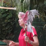 Gloria the bird trainer with one the birds
