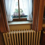 Window and radiator