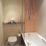 Toilet, shower and tub