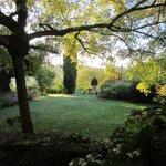 Walk in the garden before breakfast