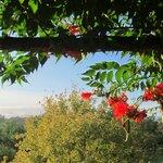 Blue skies in mid-September