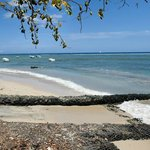 Strand in Tamarin