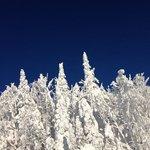 le ciel bleu