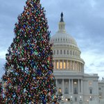 Capitol at Christmas