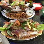 Fish and Lamb specialties at the Olive Tree Restaurant