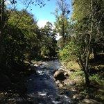 Río Savegre