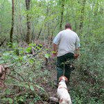 Truffle-hunting with the dogs