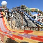 Yas Waterworld | Sebag, race with your friends!