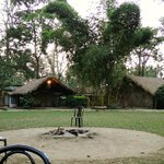 Nameri Eco Camp setting