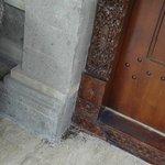 客室の前に大量の蟻とその死骸
