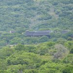 The Msenge Bush Lodge