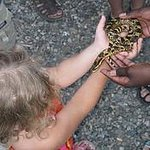 The kids got to hold snakes there
