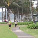 Nice walking path in front of the Islander