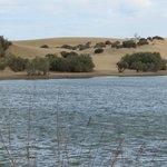 Naturschutzgebiet in der Nähe des Faro