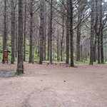 There are rest areas on the trail if you wish to take a short break.