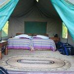 Tent 1 inside