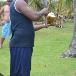 Opening up our coconut