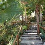 Exploring the resort gardens...