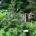 Lush, Beautiful Gardens