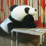 客室内のパンダ