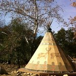 several beautiful teepees available for rent