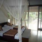 Lovely upgraded room with private pool.