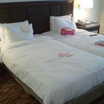 standard room - twin bed