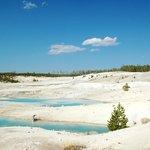 Norris Geyser Basin 1