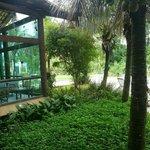 Foto de Pousada Aguas de Paratii