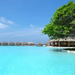 Dusit Thani Maldives Amazing place