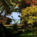 Blick vom Garten ans Meer