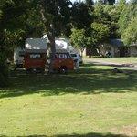 Camp Kiwi Otorohanga