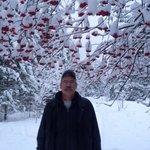 Mountain Ash Tree Umbrella