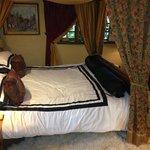 camelot suite