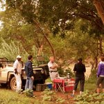 morning tea next to the hippos in the Olifant river