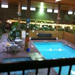 View from our room into the indoor garden and pool area.