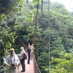 On the swinging bridge in the Monteverde Cloud Forest Reserve