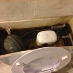 トイレのタンクの中をのぞくと、カビだらけ、サビだらけ、水垢だらけ